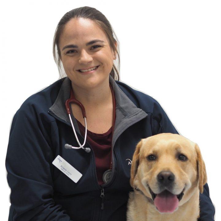 Dr Belinda Carey