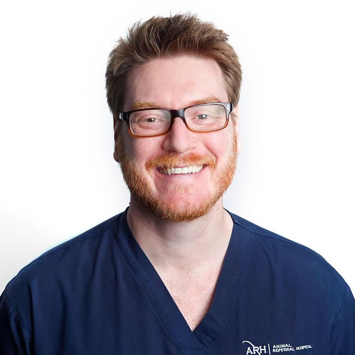 Dr David Lurie