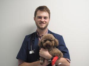 Dr Christopher Skinner, vet, holding dog