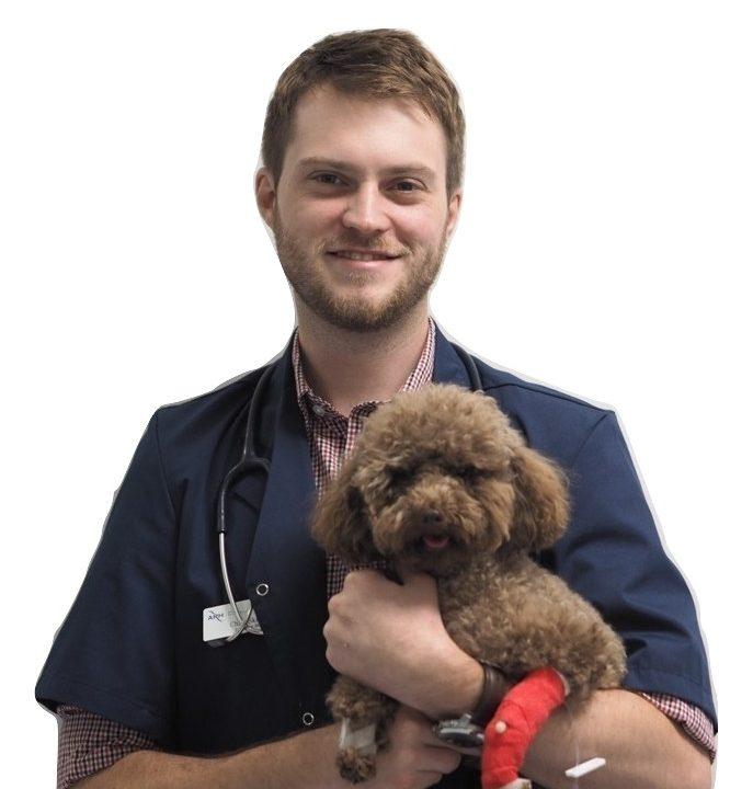 Dr Christopher Skinner