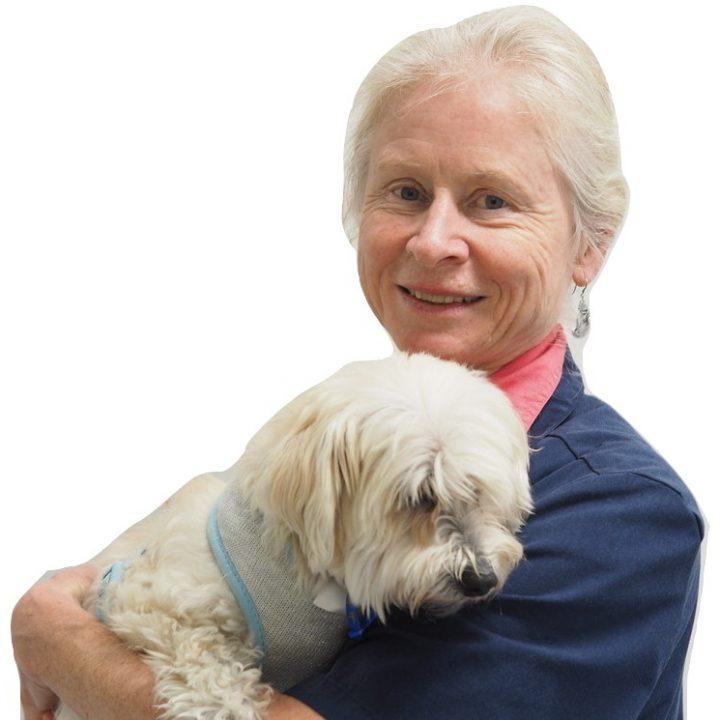 Dr Christine Thomson